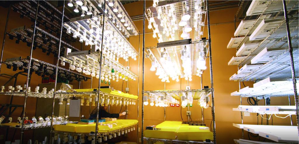 multiple light bulbs